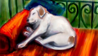 Joe Condon - Digital Paintings - Sparky